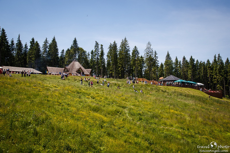 на вершине,bukovel,summer,ukraine