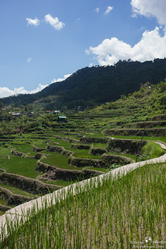 непопулярное место,rice terraces,maligkong,philippines