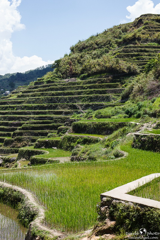 нетуристическое место,rice terraces,maligkong,philippines