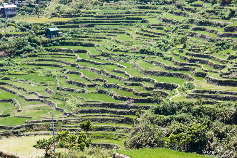 стоящее место,rice terraces,maligkong,philippines