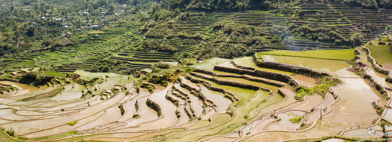 вид,rice terraces,maligkong,philippines