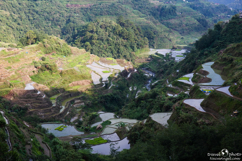 терассы с водой,banaue,rice terraces,philippines