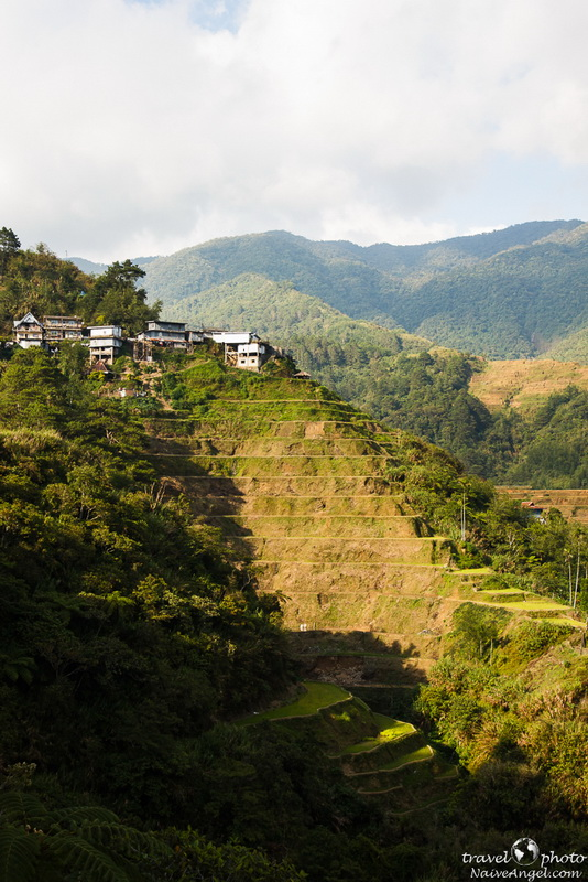 banaue,rice terraces,philippines