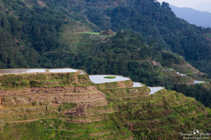 терассы на закате,banaue,rice terraces,philippines