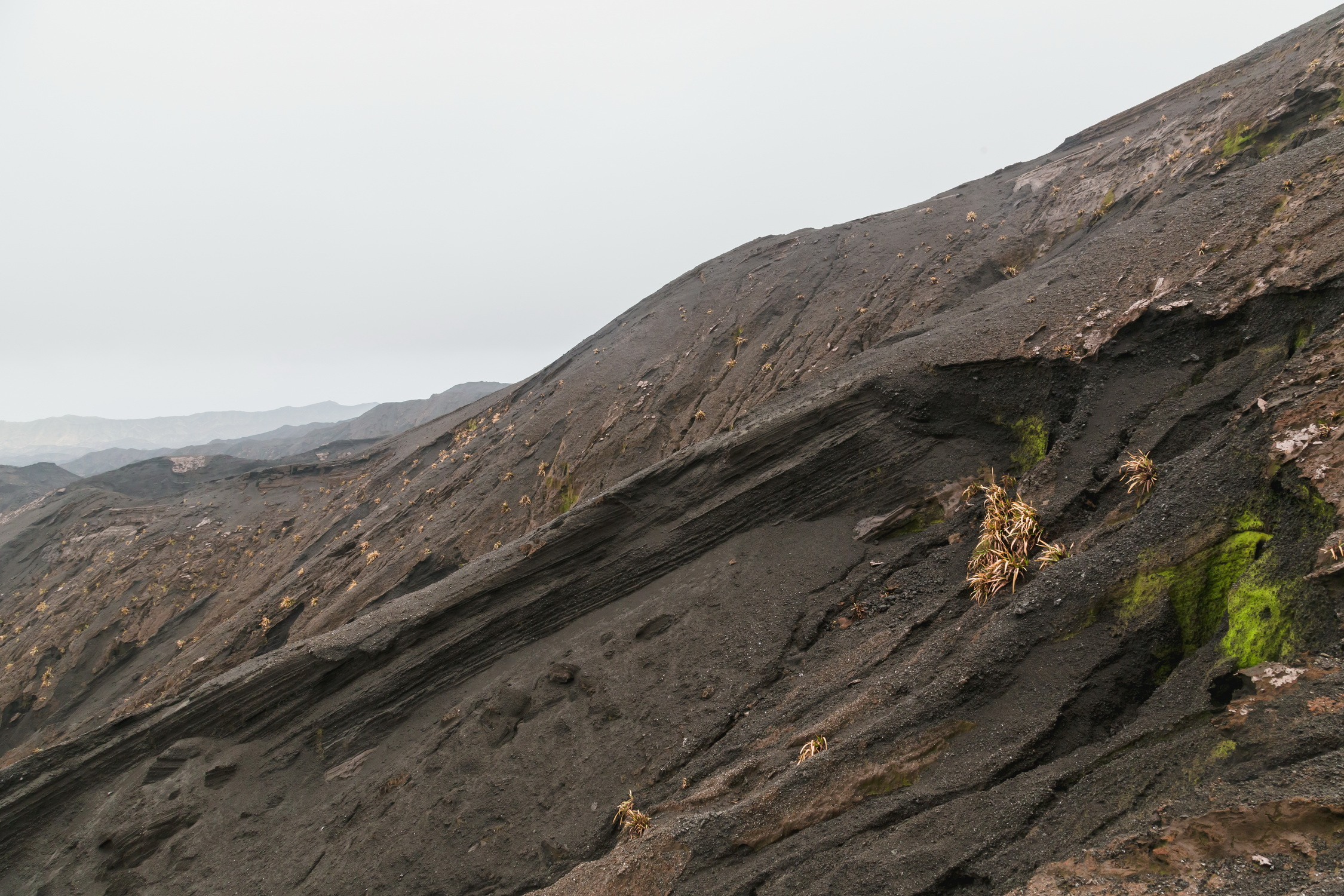 Crater And Rain Forest Tour Maui