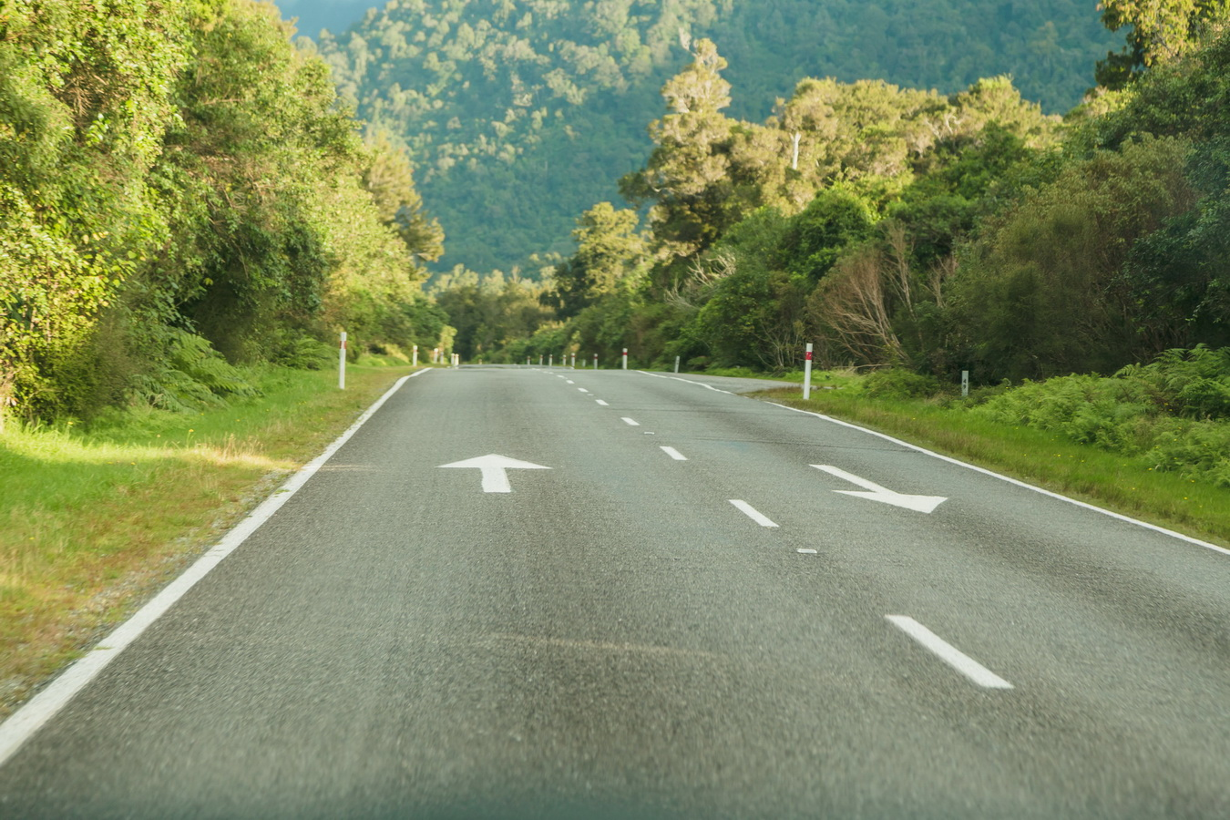 marks on a road,keep left, road, car,road sign, new Zealand