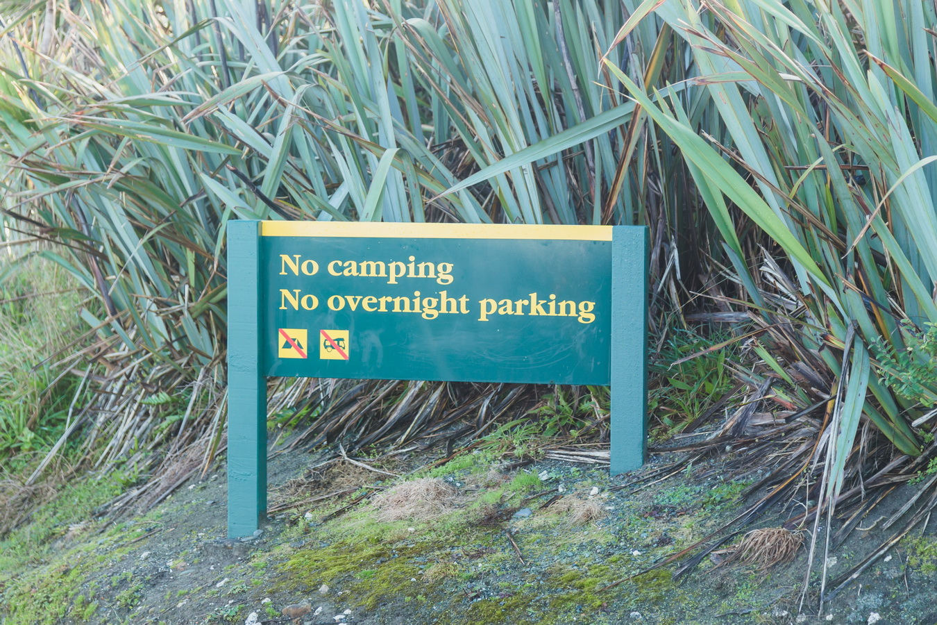 No camping, No overnight parking,car sign, rest,parking, new Zealand