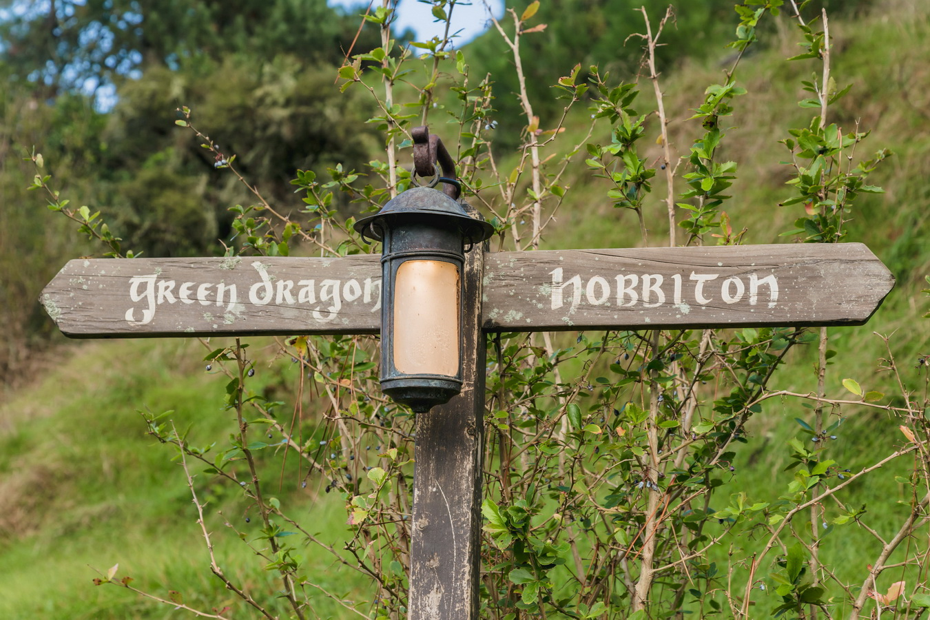 way sign,The Hobbiton, The Shire,Хоббитшир, Удел, Хоббитания, Заселье, Край,Matamata, North Island ,New Zealand