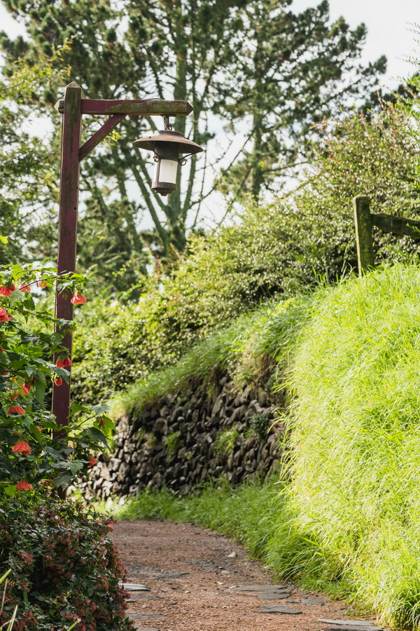 lamp,way,The Hobbiton, The Shire,Хоббитшир, Удел, Хоббитания, Заселье, Край,Matamata, North Island ,New Zealand