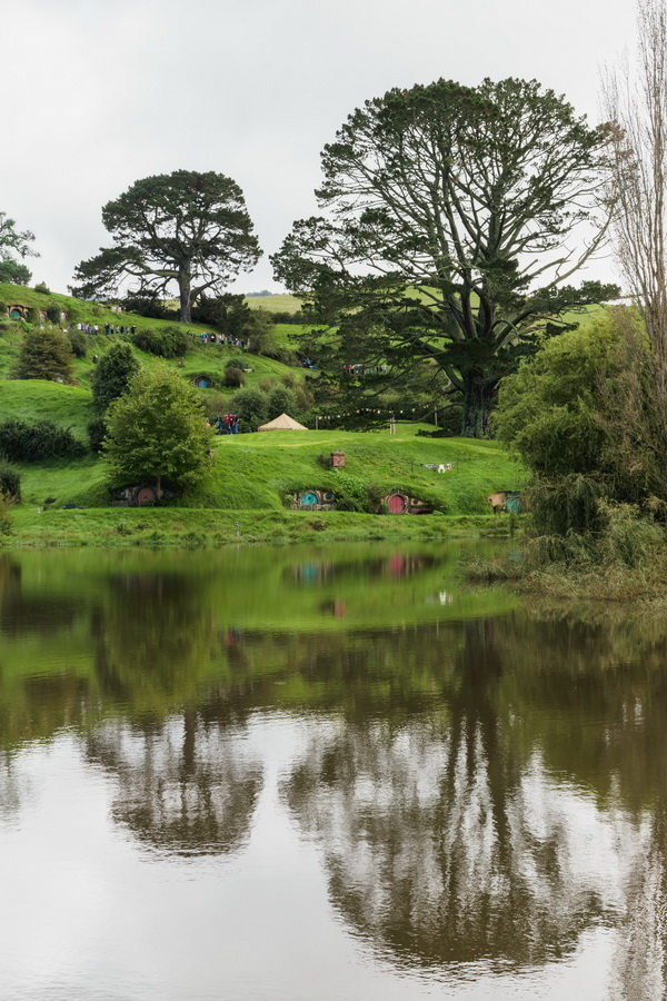 big tree,houses,lake,The Hobbiton, The Shire,Хоббитшир, Удел, Хоббитания, Заселье, Край,Matamata, North Island ,New Zealand