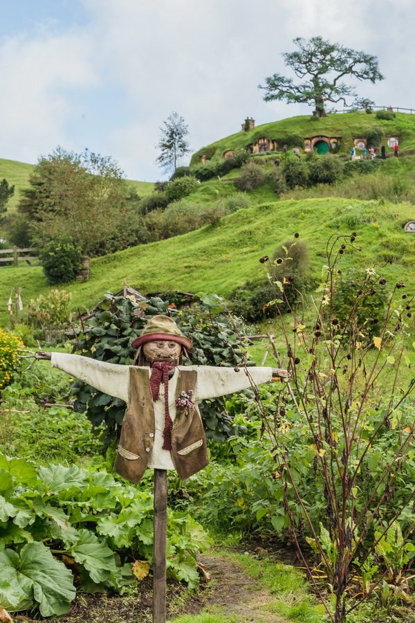 Scarecrow,The Hobbiton, The Shire,Хоббитшир, Удел, Хоббитания, Заселье, Край,Matamata, North Island ,New Zealand