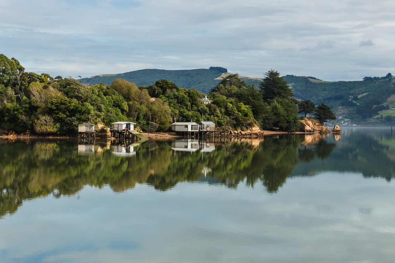 reflection in the sea bay,Dunedin, South Island ,New Zealand