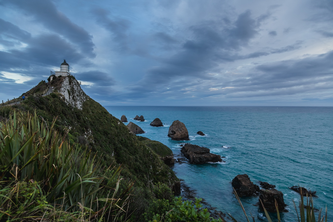 Nugget Point, South Island ,New Zealand