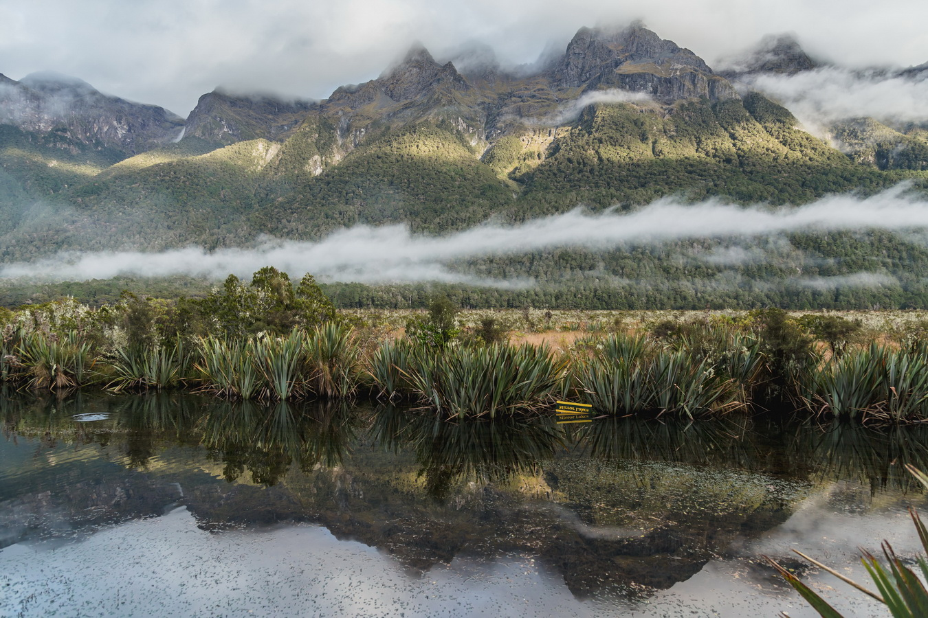 mirror lakes, Milford Sound, Fjord land, Fjordland National Park,South Island ,New Zealand