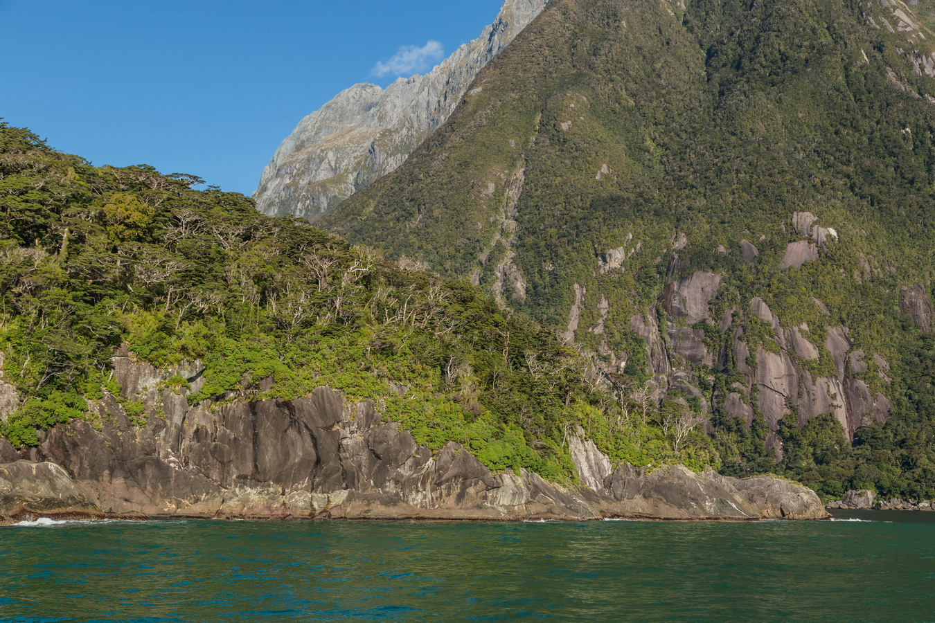 Tasman Sea, Milford Sound, Fjord land, Fjordland National Park,South Island ,New Zealand