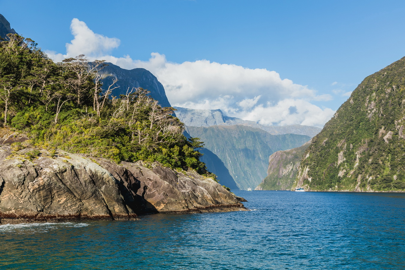 Milford Sound, Fjord land, Fjordland National Park,South Island ,New Zealand