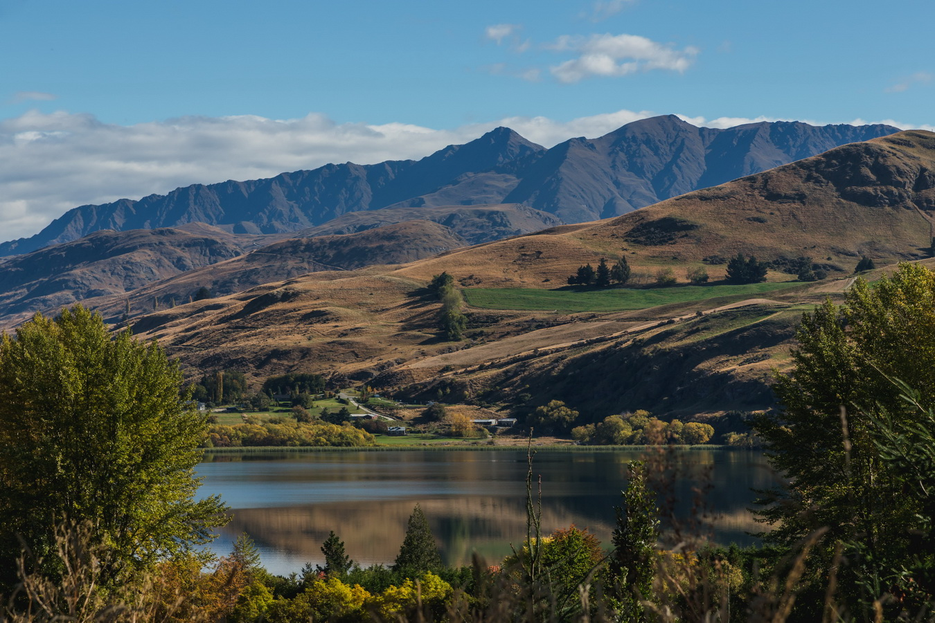 Lake Dunstan,South Island ,New Zealand