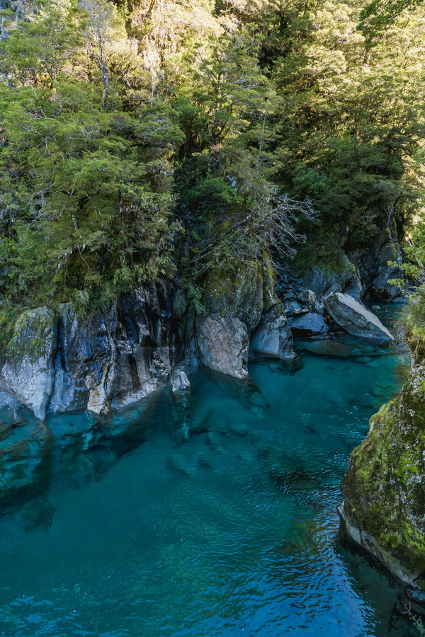 Blue Pools Walk, Mt Aspiring National Park, South Island ,New Zealand