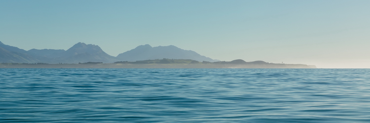 bay, Kaikoura,Whale Watch Tour, South Island ,New Zealand