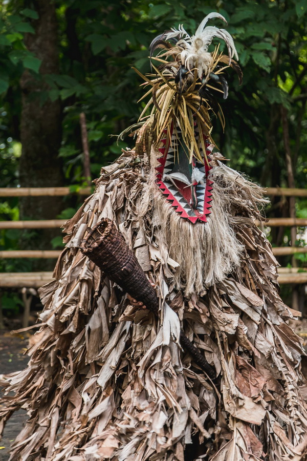 traditional costume,Rom dances,Fanla, north Ambrym, Ambrym, Vanuatu
