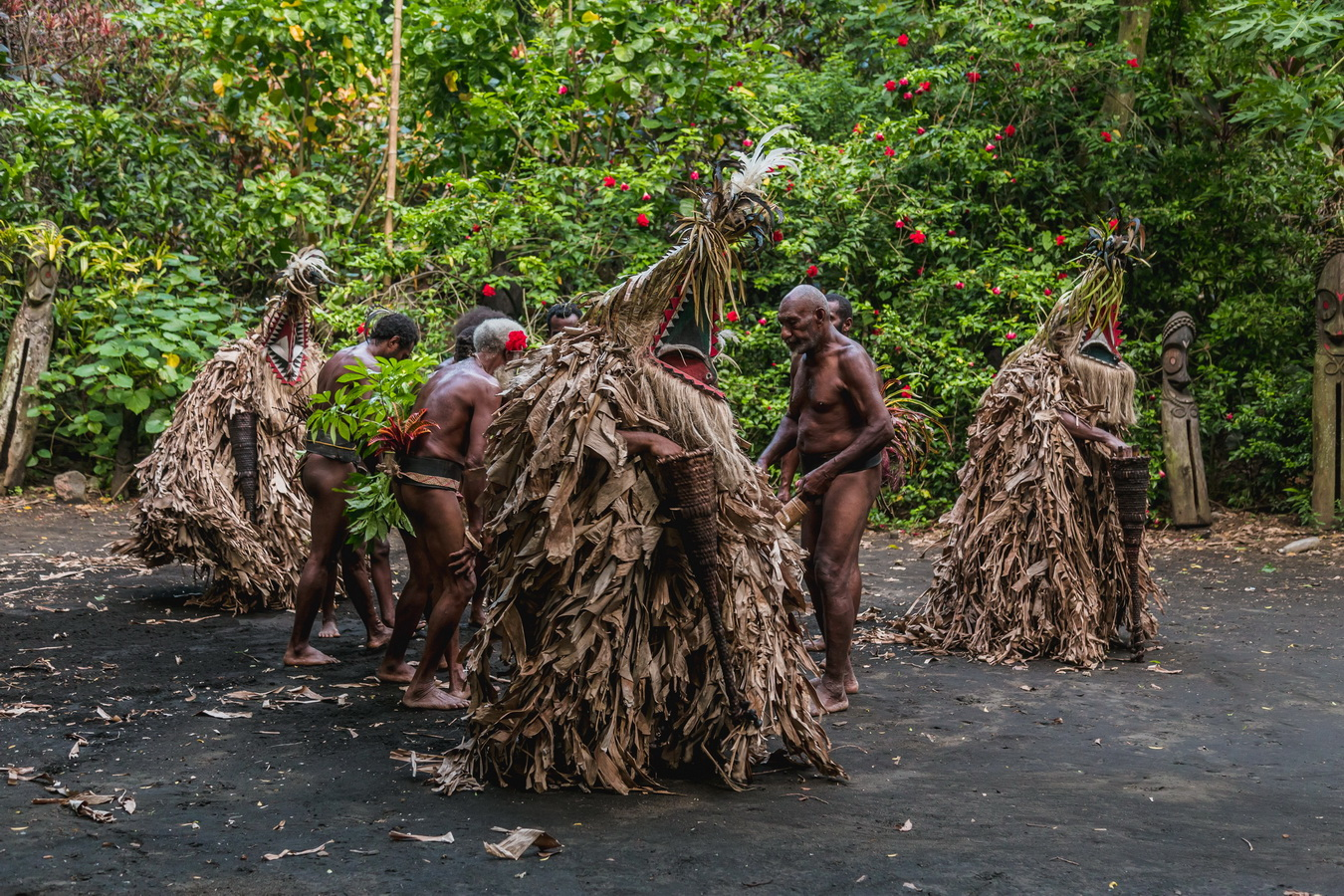 local traditions,Rom dances,Fanla, north Ambrym, Ambrym, Vanuatu