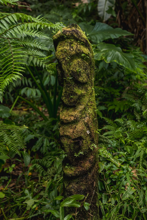 wood carving, statue,north camp,lava fields,crater,volcano,Ambrym, Vanuatu